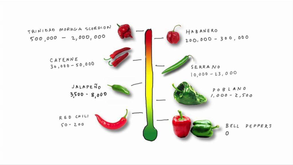 Scolville Scale Spiciness scale