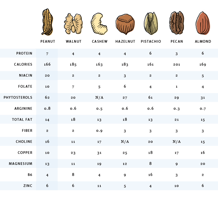 Nuts nutrition nut comparison - Vegan Family Recipes