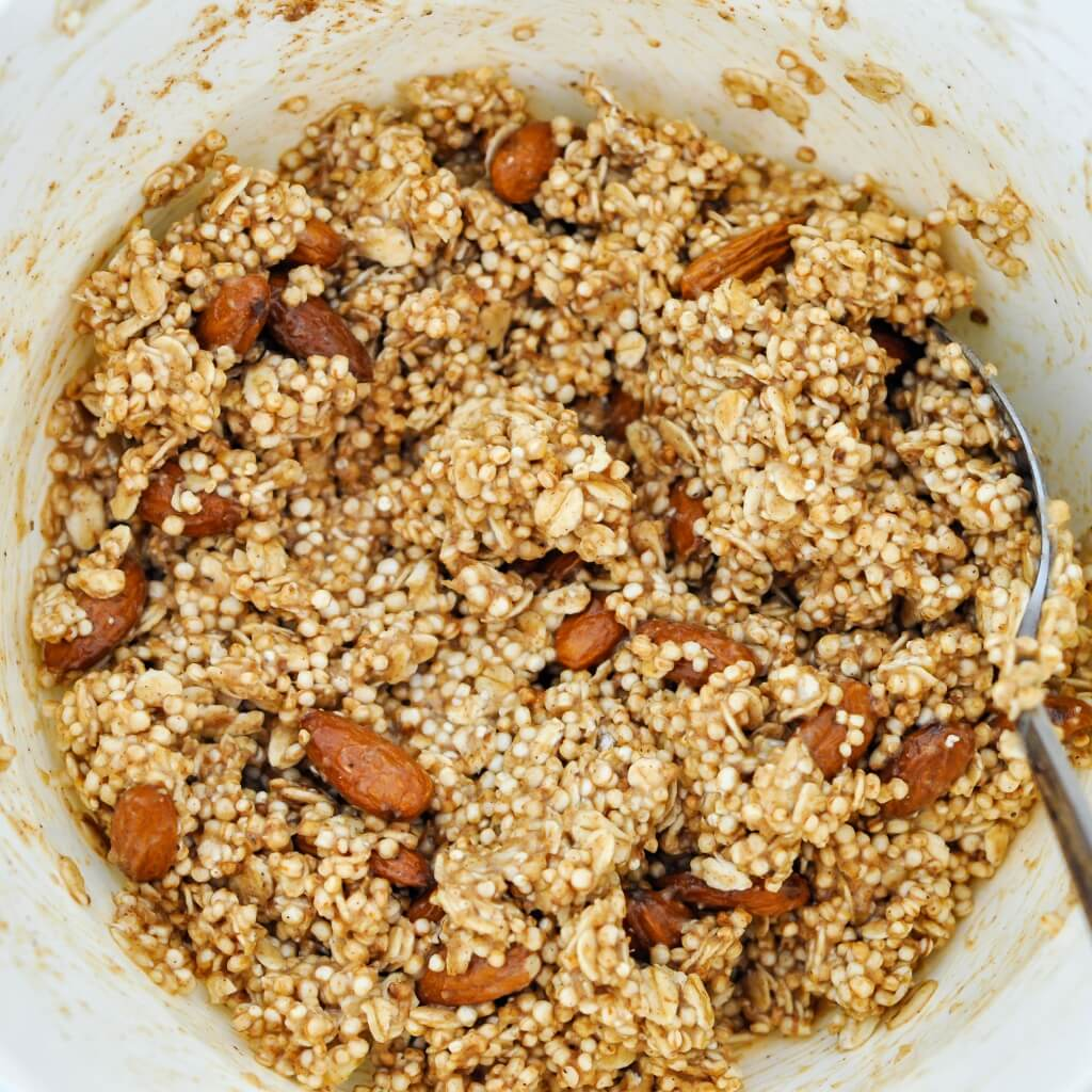 Puffed Quinoa Oat Bar mixture - Vegan Family Recipes