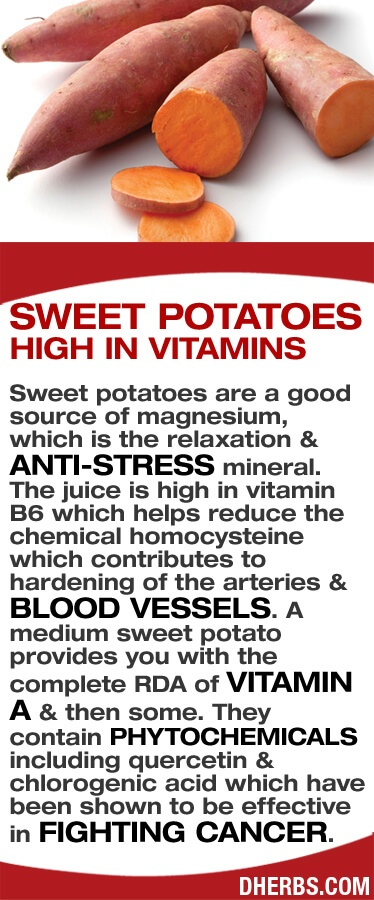 Sweet Potato Infographic and health benefits